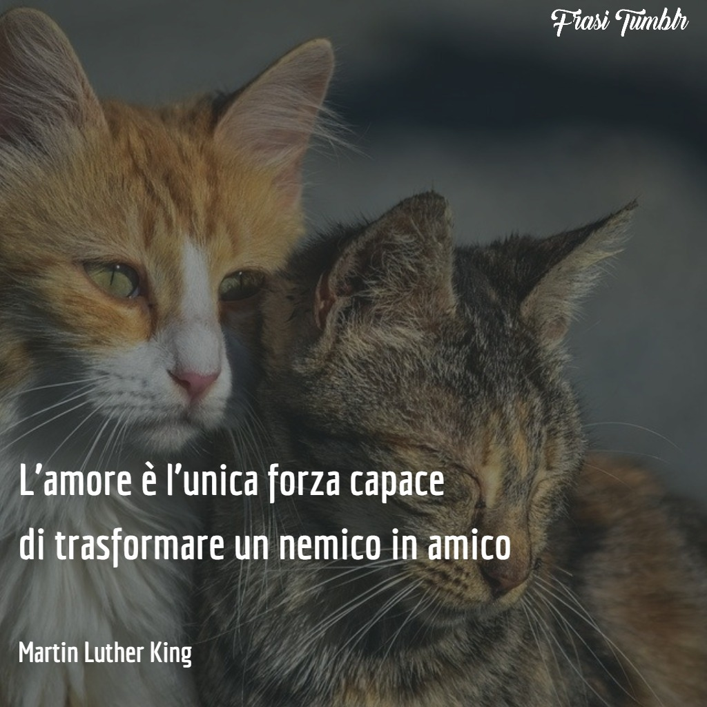 frasi-martin-luther-king-pace-non-violenza-amore-amico-nemico