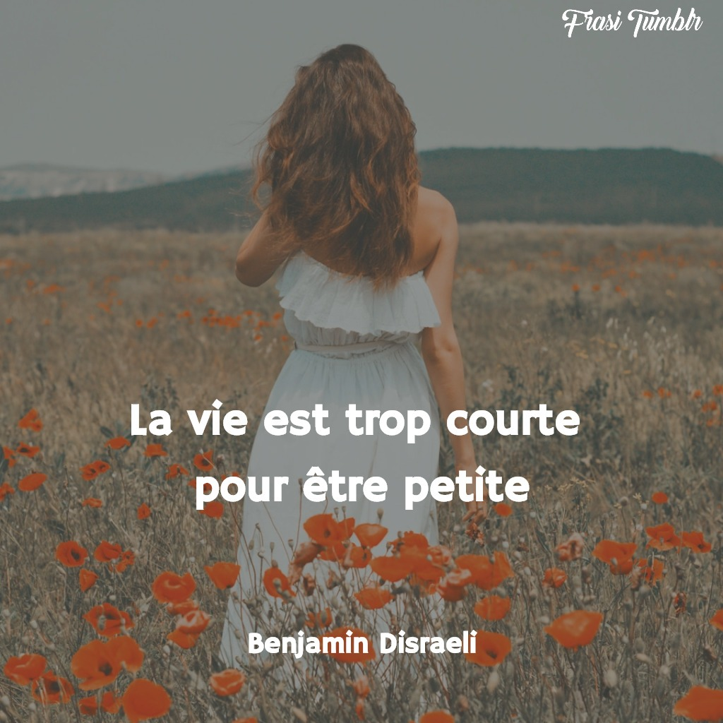 frasi-vita-francese-piccola-breve