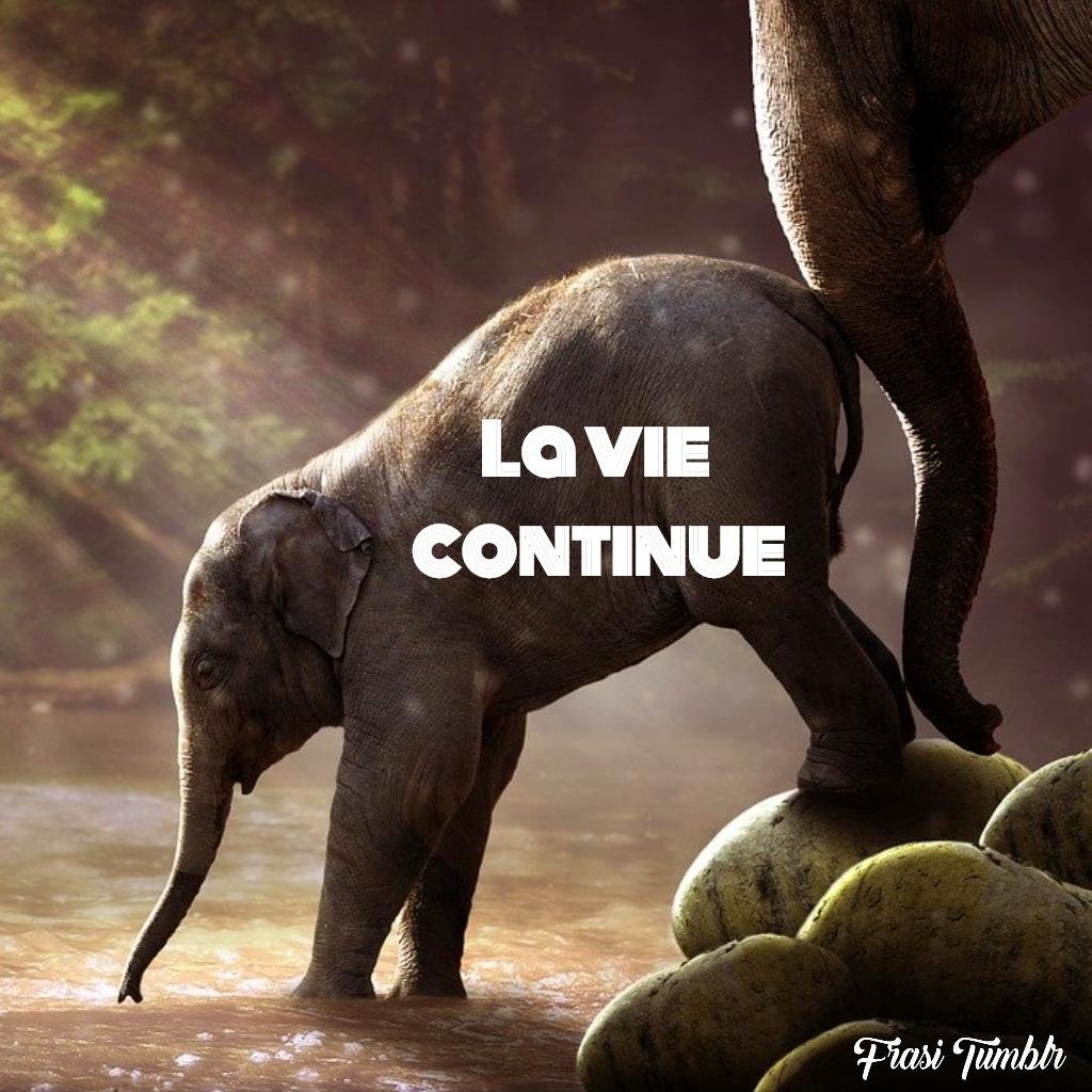 frasi-vita-francese-vita-continua
