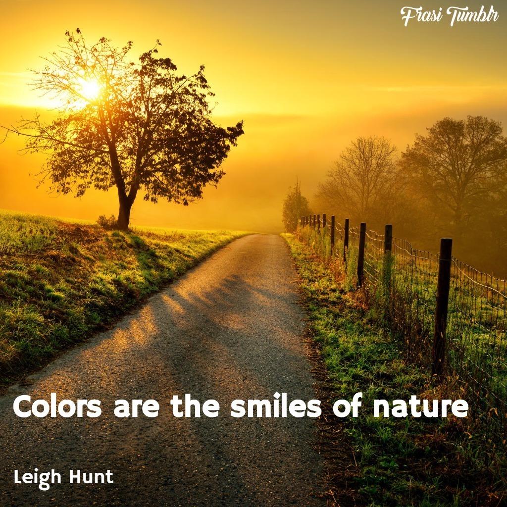 frasi-instagram-inglese-estate-colori-natura