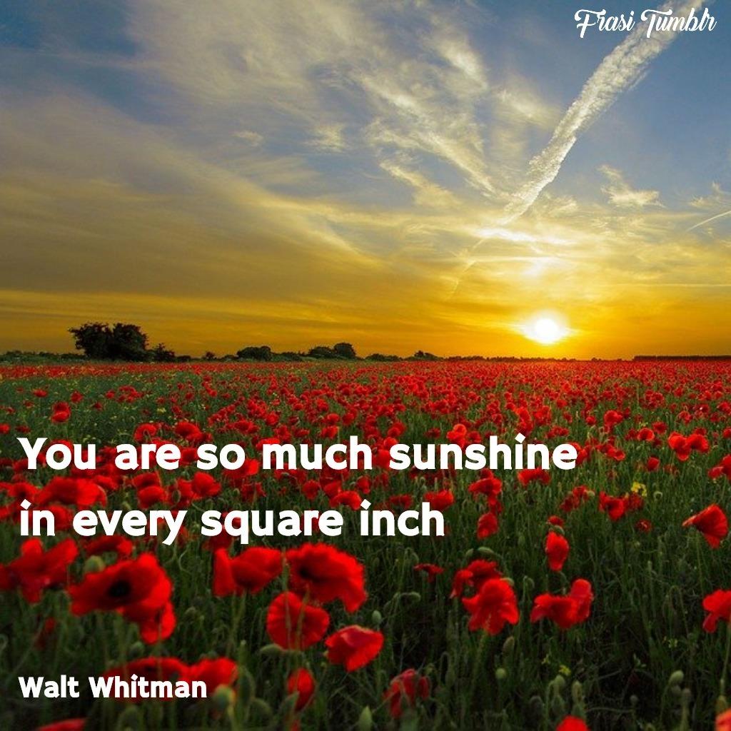 frasi-instagram-inglese-estate-sole-quadrato