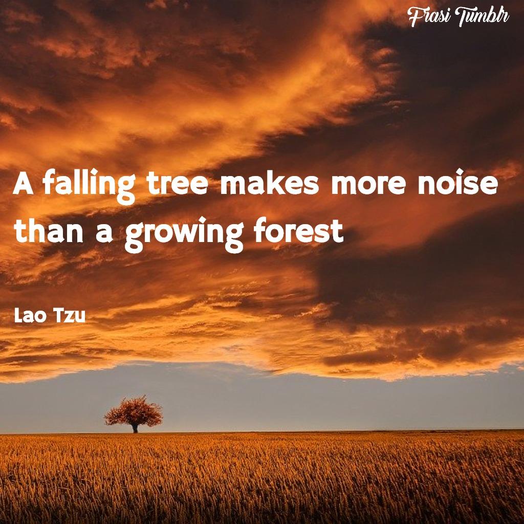 frasi-lau-tzu-inglese-albero-foresta