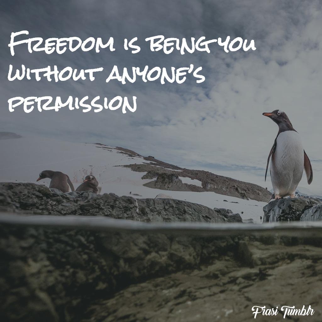 frasi-liberta-inglese-permesso