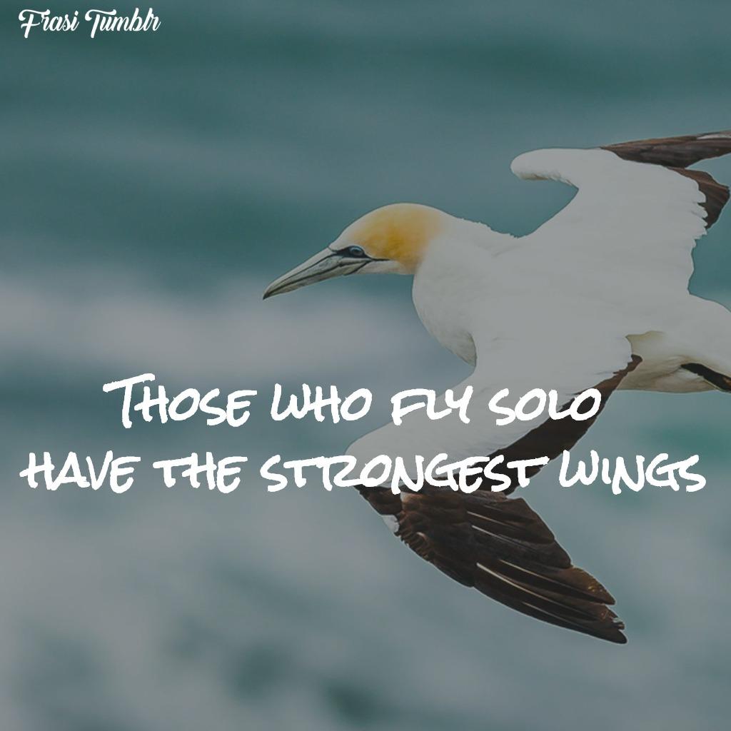 frasi-liberta-inglese-volare-soli