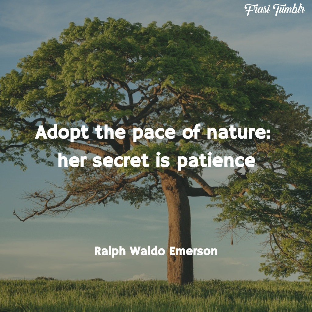 frasi-natura-inglese-pazienza-ralph-waldo-emerson-1024x1024