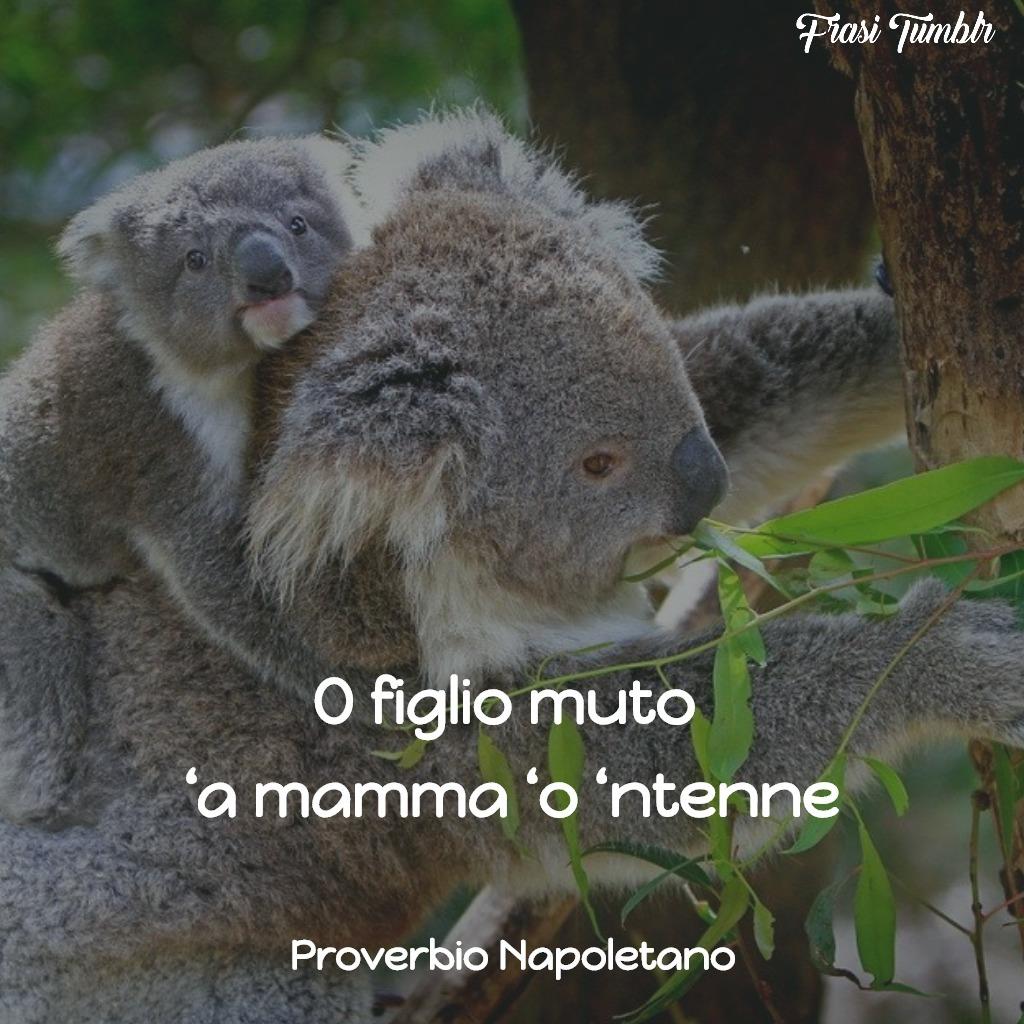 frasi aformismi proverbi mamma napoletano mamma capisce figlio muto