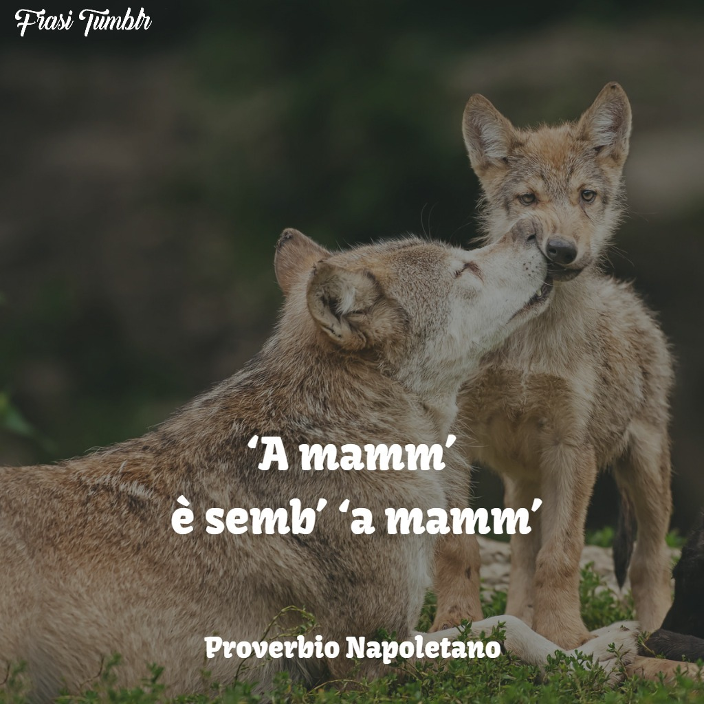 frasi aformismi proverbi mamma napoletano mamma sempre mamma