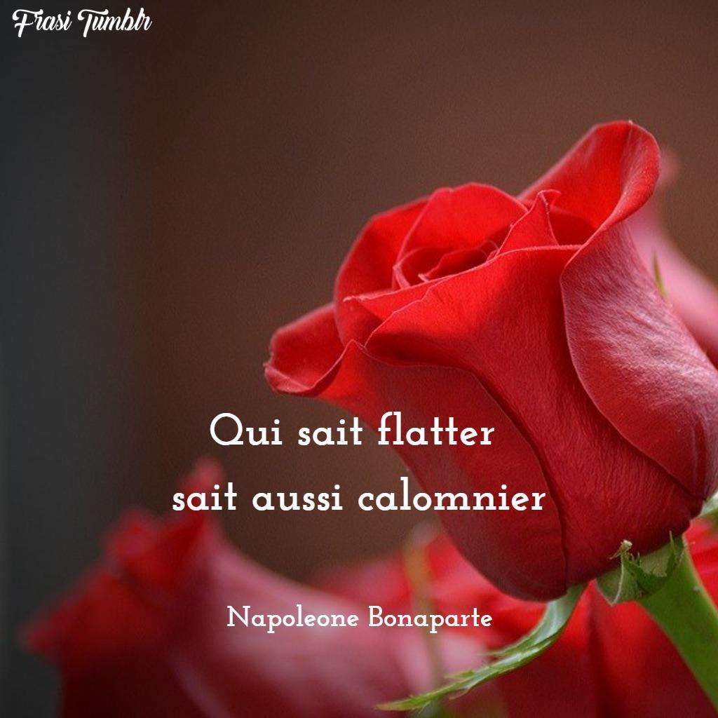 frasi napoleone bonaparte francese coraggio adulare calunniare