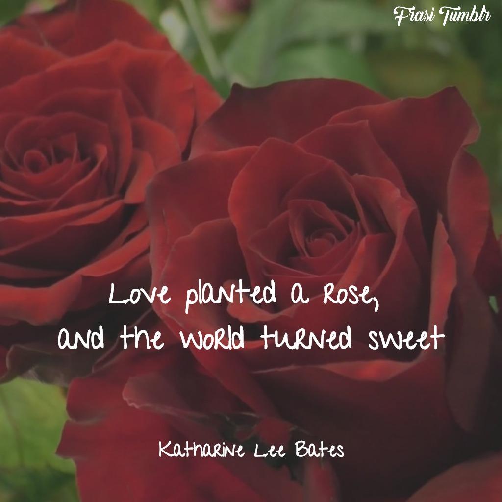 frasi rose inglese amore dolce