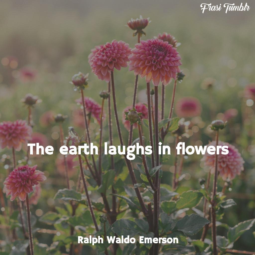 frasi rose inglese fiori terra ride