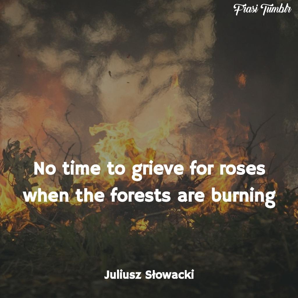 frasi rose inglese foresta brucia