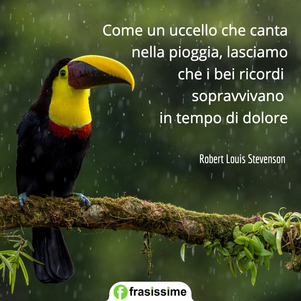 frasi sui ricordi uccello canta pioggia dolore stevenson