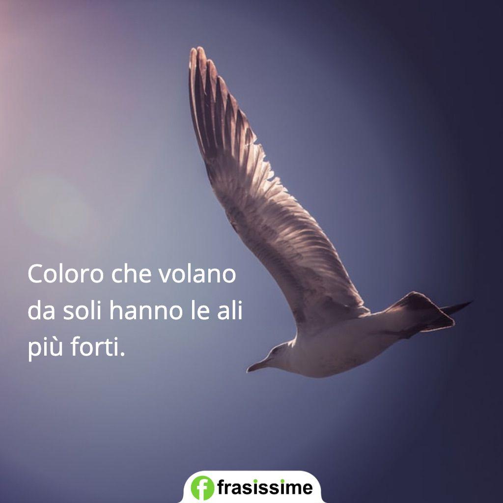 frasi sulla solitudine volano da soli ali forti
