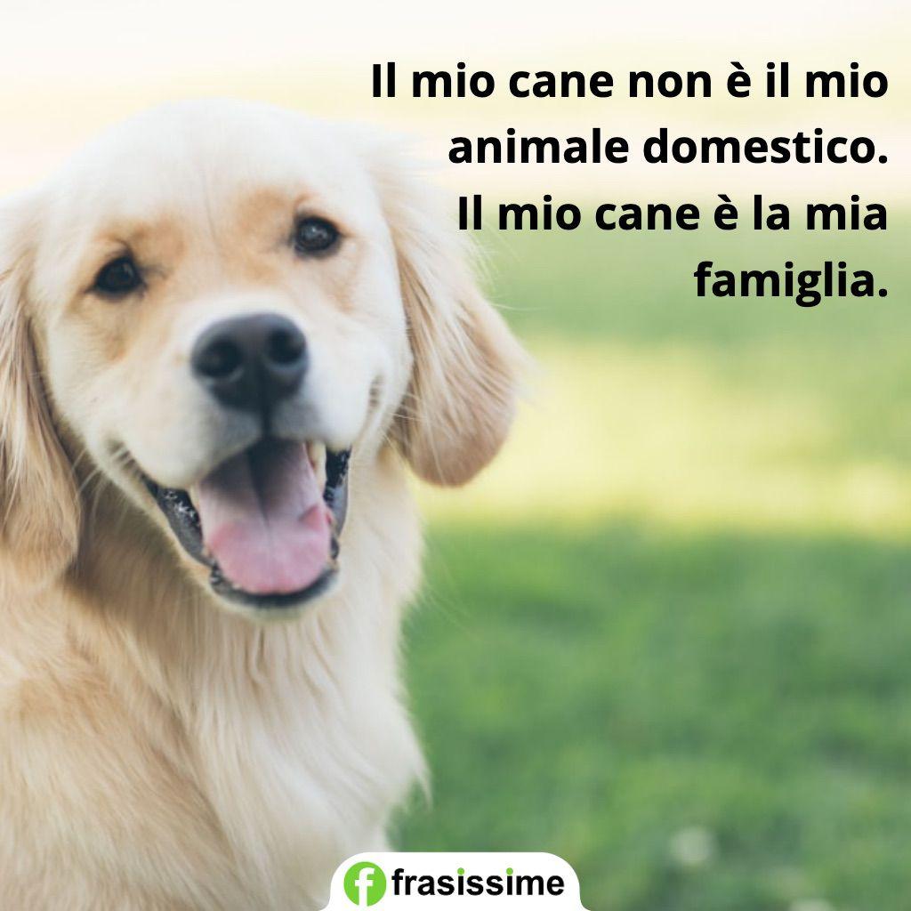 frasi cani mio cane famiglia