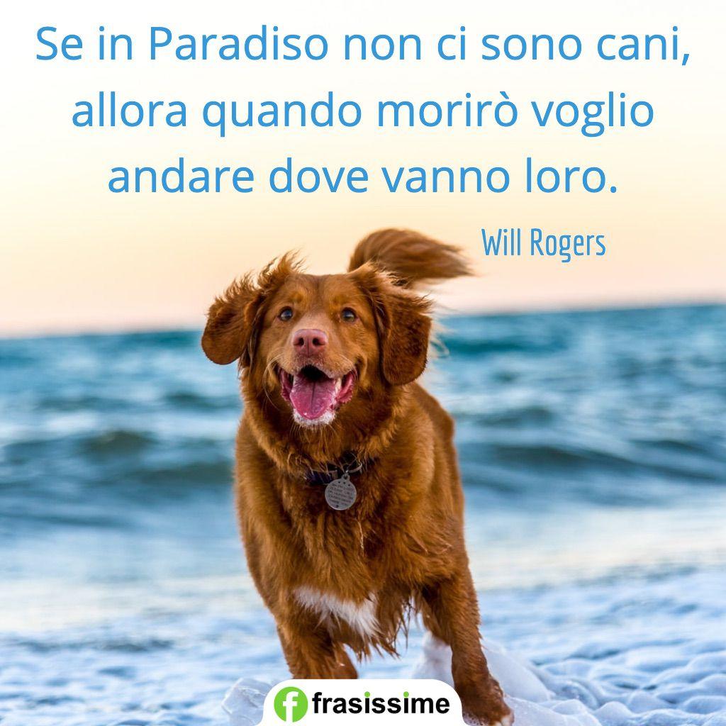 frasi cani paradiso volgio andare dove vanno loro rogers