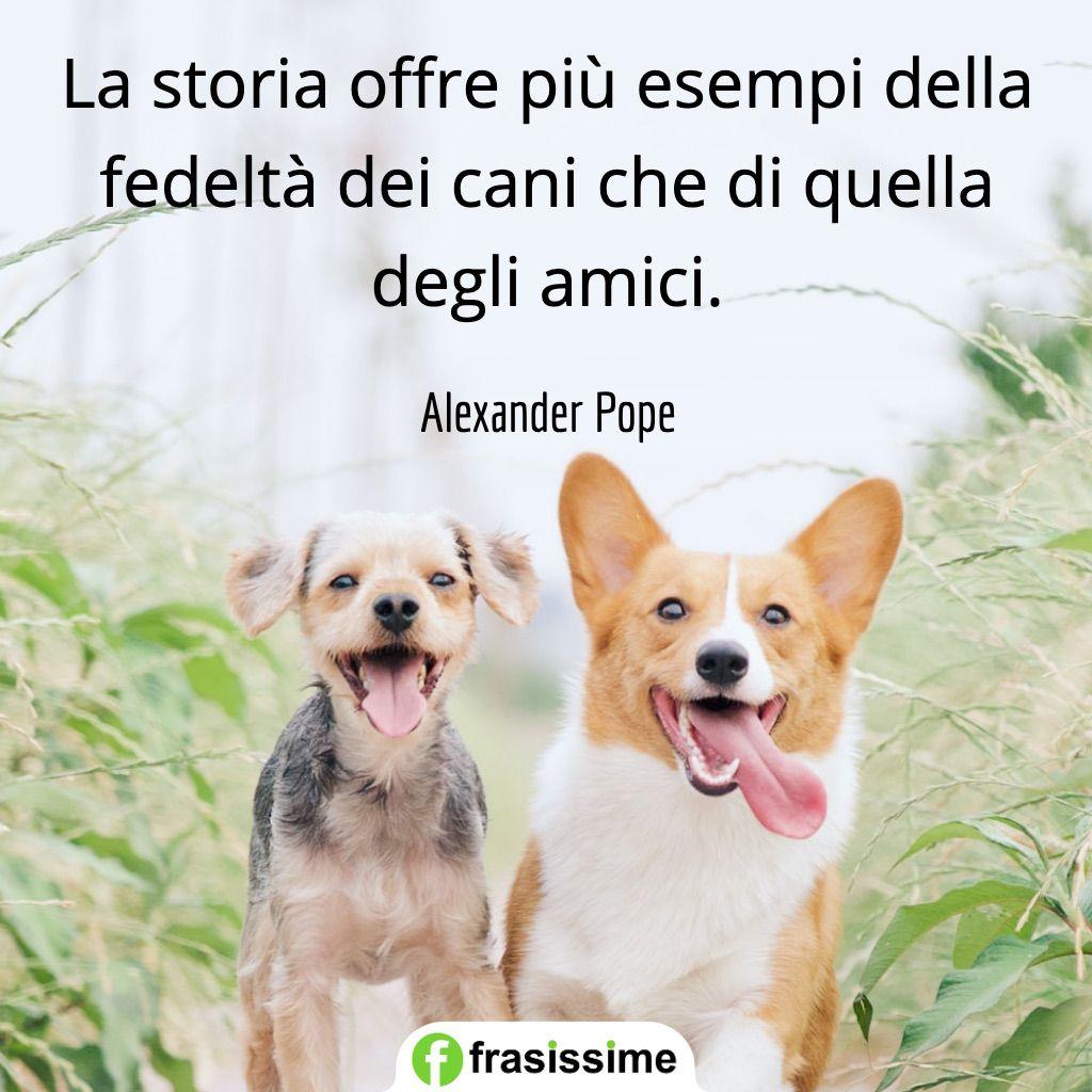 frasi cani storia esempi fedelta amici pope