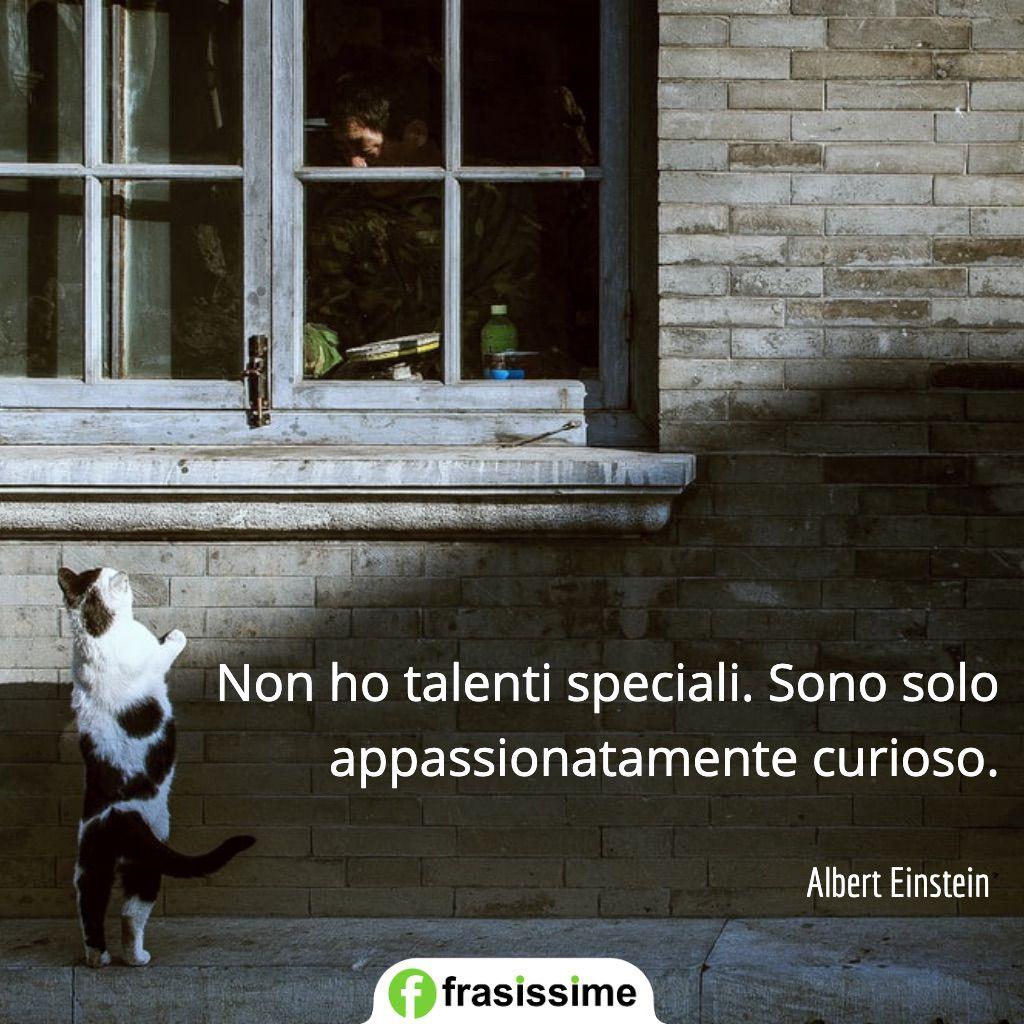 frasi curiosita non ho talenti speciali einstein