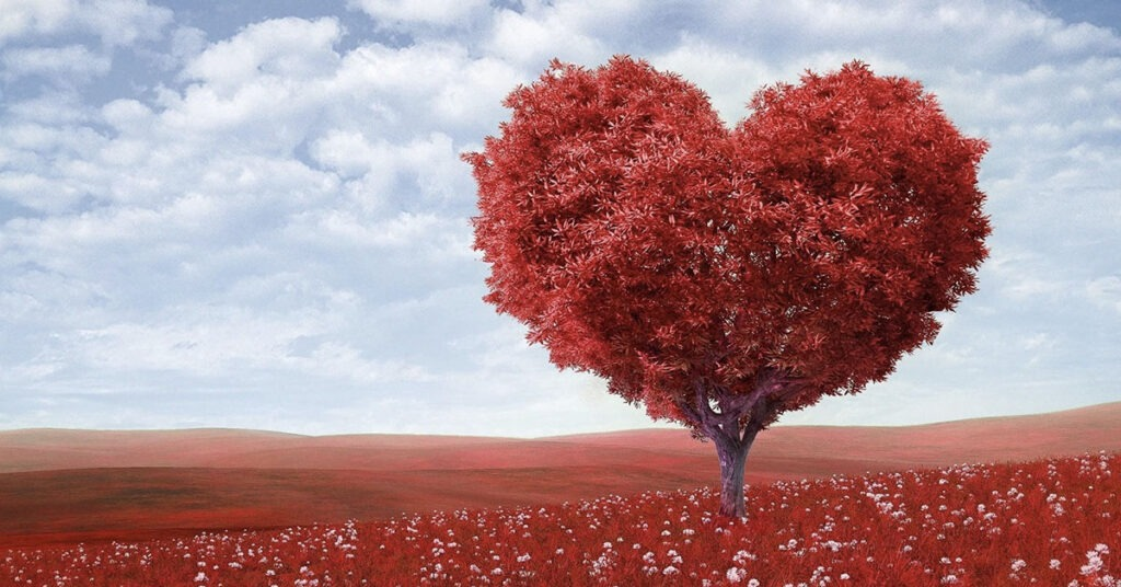 aforismario amore