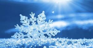 frasi sulla neve