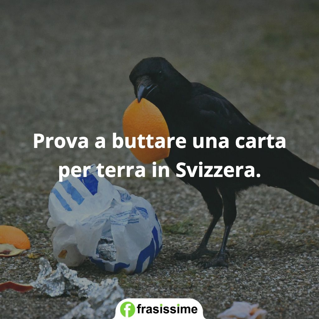 frasi prova buttare carta svizzera