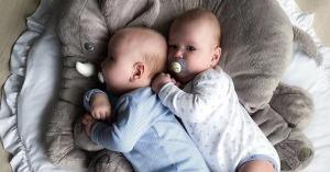 frasi nascita gemelli